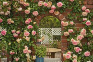 райская роза